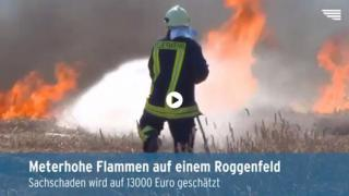 Video: Feld steht in Flammen