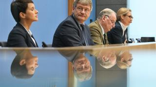 Nach Petry-Abgang: Droht der AfD weitere Spaltung?
