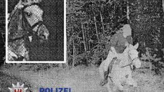 Polizei blitzt Pferd - und Tausenden gefällt das