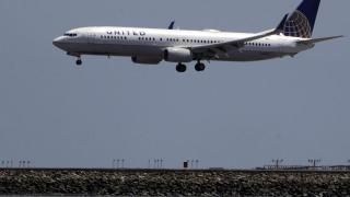 Neues Hunde-Problem bei United Airlines