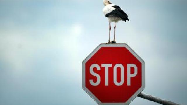 Stop-Storch