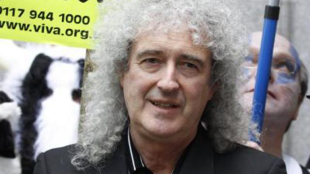 Brian May: Freddie war die beste Galionsfigur