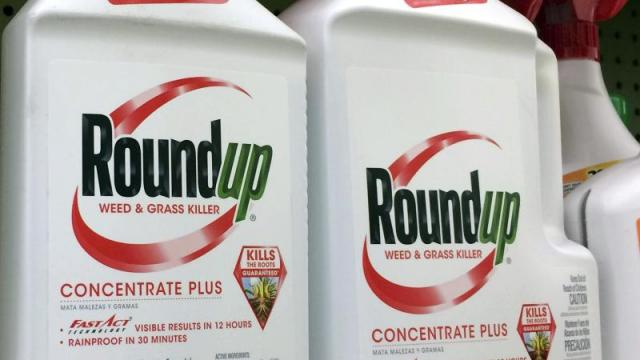Bayer – Monsanto – Roundup
